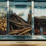 Naturopatía: Prevención natural de enfermedades
