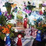 Se Celebro la Exposición de Orquídeas y Arte en Armonía en el Jardín Botánico.