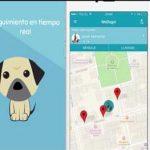 WeDogs!, nueva app para mascotas ante un mercado prometedor