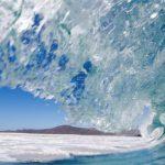 Las olas de calor marinas se han incrementado un 50% en un siglo