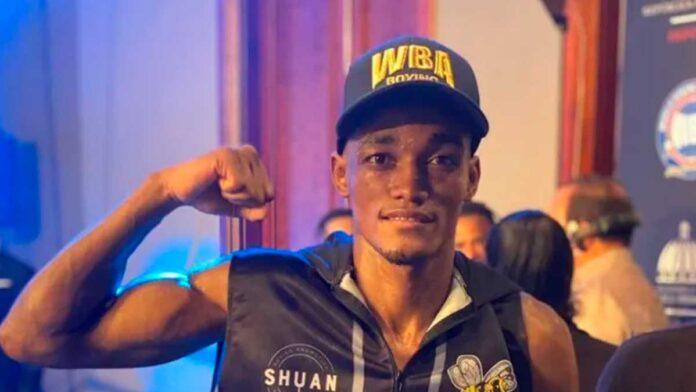 Cartelera de boxeo en el país, incluye dos dominicanos en defensa y búsqueda de títulos mundiales